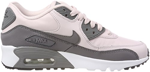 Nike Youth Air Max 90 Scarpe Da Ginnastica In Pelle Di Rosa Dorzo / Gunsmoke-white