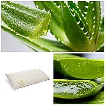 CONFORT HOME M.T. (70) Almohada VISCO-ELÁSTICA Aloe Vera 100% (Almohada 70 CM)
