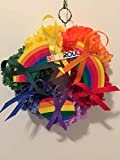 COLLEGE PRIDE - SPIRIT - SMALL GAY PRIDE WREATH - LGBTQ - STUDENT ORGANIZATIONS - UNIVERSITY DIVERSITY GROUPS - GAY PRIDE - DORM - COLLECTOR WREATH - RAINBOW CARNATIONS - RAINBOW FLAG -BE PROUD