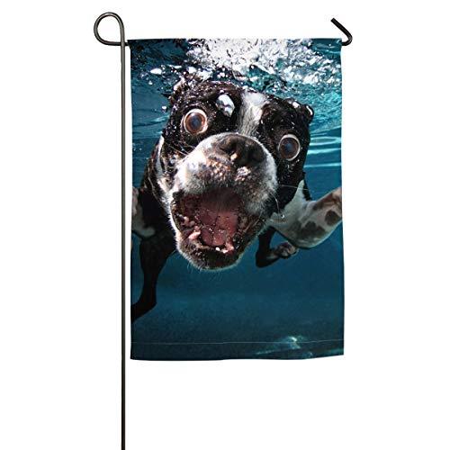 Boston Terrier Underwater Dog Happy Party for Yard Flag Garden Flag
