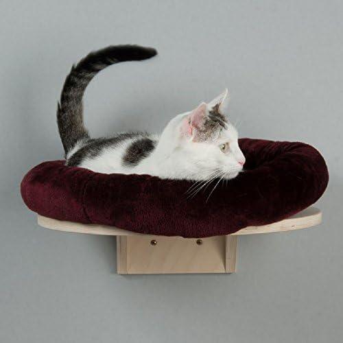 Natural Paradise - Cama para gato montada en la pared con cojín redondo de felpa: Amazon.es: Productos para mascotas
