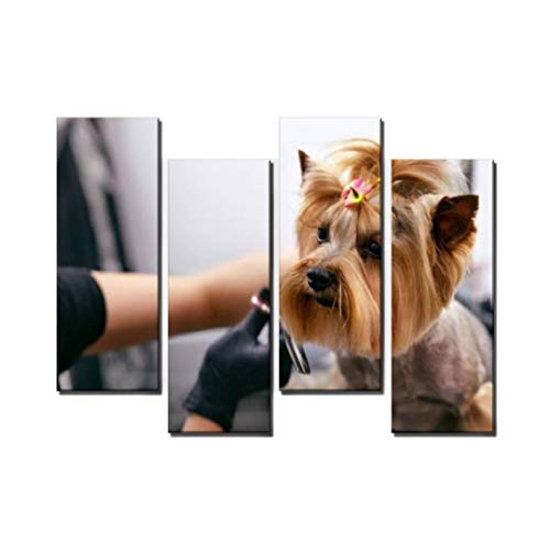 Wocatton-Dog-Gets-Hair-Cut-at-Pet-Spa-Grooming-Salon-Closeup-of-Dog-Wall-Art-Background-Decor-Pictures-Print-On-Canvas-Art-Stretched-and-Framed-Perfect-Home-Decoration