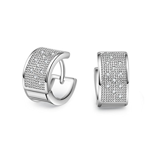 ER-20174C1 Explosion Models Silver Europe Geometric Plating Women's Earring (Clutch Cristal)