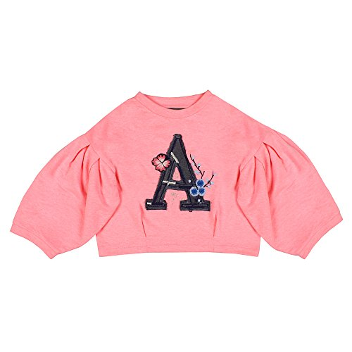 Balloon Sleeve Top - Jorjy Little Girls' Terry Embroidered Balloon Sleeve Top with Applique M Pink