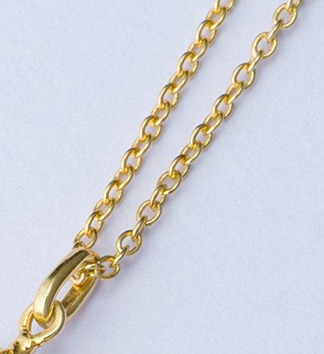 [Made in Japan] Necklace Portaforna Italiana(europea)