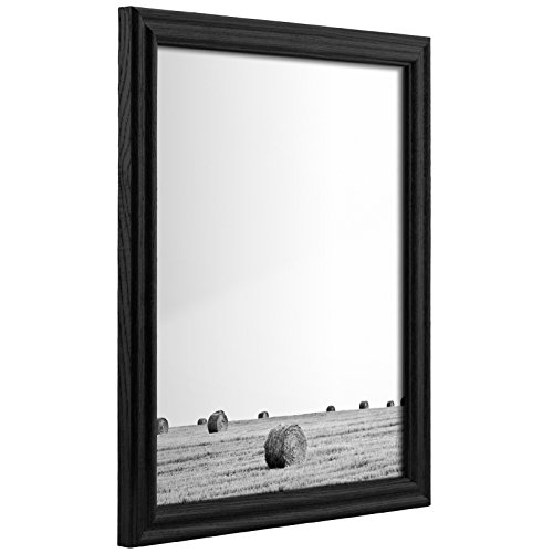 Craig Frames 200ASHBK 12 by 18-Inch Picture Frame, Wood Grain Finish, .75-Inch Wide, Black