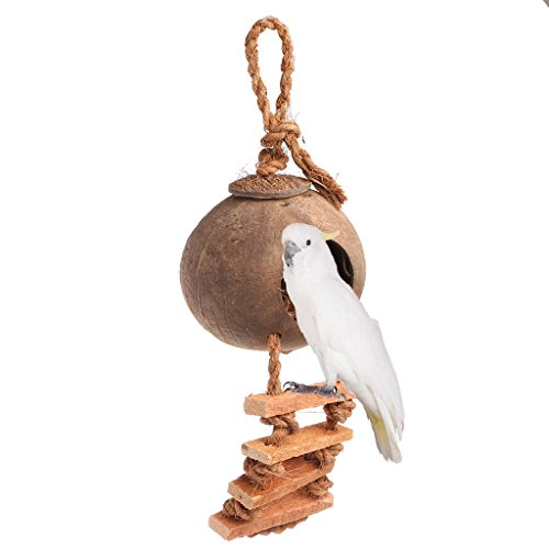 Hukai Pet Birds Parrot Parakeet Swing Natural Coconut Shell Nest Ladder Toy Cage Toys by Hukai