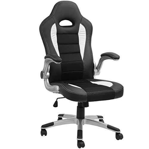 Barton Executive Computer Desk Chair, Racing Car Gaming Chair ()