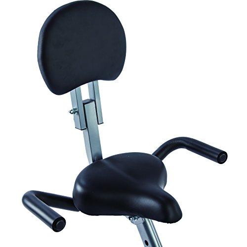 Sunny Health & Fitness Magnetic Folding Recumbent Bike Exercise Bike, 220lb Capacity SF RB1117