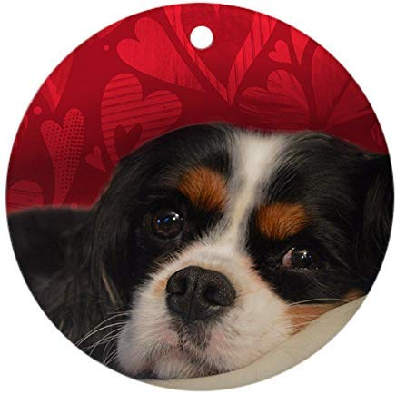 - Voicpobo Tri-Color Cavalier King Charles Spa Round Ornament Novelty Round Ceramic Christmas Ornaments Christmas Tree Decorative 3 inches