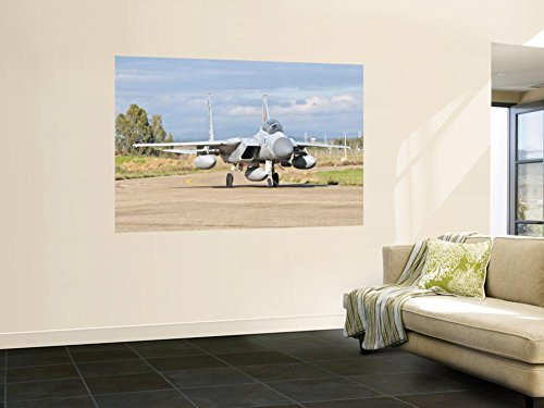 An F-15D Baz of the Israeli Air Force Wall Mural by Stocktrek Images 48 x - F-15d Eagle