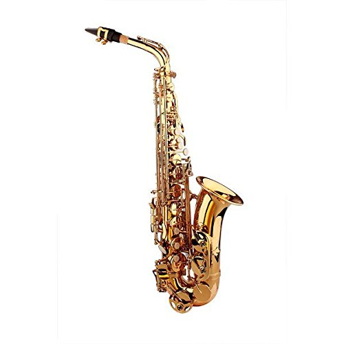 LADE Alto Eb Golden Saxophone Sax Paint Gold With Case & Accessories by SOUND HOUSE 28 (Image #2)