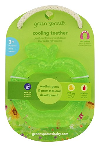 Green Sprouts Teether Apple Fruit