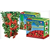 Topsy Turvy Strawberry Planter (2 pack)