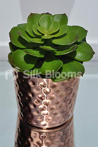 Silk Blooms Ltd 人工プレミアムグリーン多肉植物テーブルプラント ブロンズ銅ポット付き B07H8H99BG