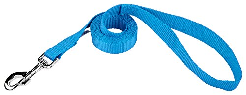 Country Brook Design 1 Inch Nylon Dog Leash Ice Blue - 6 - Ten Light Country