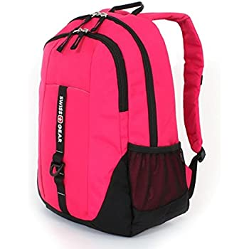Amazon.com: SwissGear Travel Gear 6639 School Backpack (Pink ...