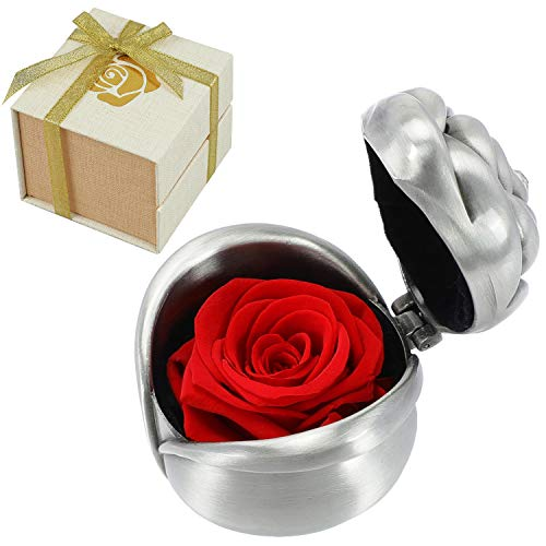 Childom Mothers Gift,Preserved Flower,Red Roses,Rose Flower,Eternal Rose,Preserved Roses Female Gifts for Women for Her Gift Mom Present Mother's Day Anniversary Birthday Wedding