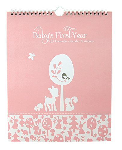Baby's First Year Calendar Keepsake with Milestone Stickers