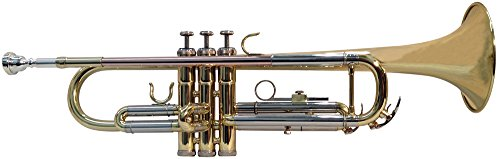 TIC New York HTR200 Bb Trumpet lacquer with Rose Brass Leadpipe by TIC New York