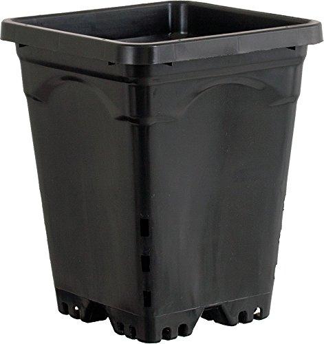 Active Aqua HG6X6SB 6''x6'' Square Pot (Case of 50), 8'', Black by Active Aqua