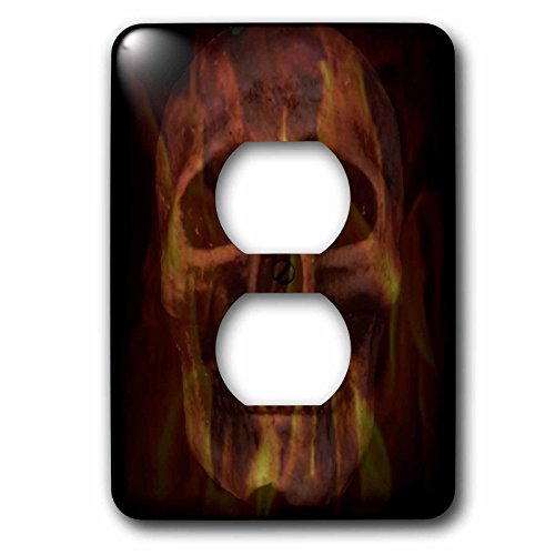 3dRose WhiteOaks Photography and Artwork - Skulls - Fire Skull is an art piece I did of skulls and overlaying fire - Light Switch Covers - 2 plug outlet cover (lsp_265363_6) by 3dRose