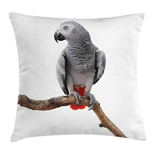 Ambesonne Grey Throw Pillow Cushion Cover, Parrot Bird Psittacus Erithacus Standing on a Branch Tropical Nature Wildlife, Decorative Square Accent Pillow Case, 18