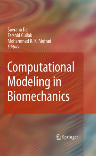 Image for publication on Computational Modeling in Biomechanics