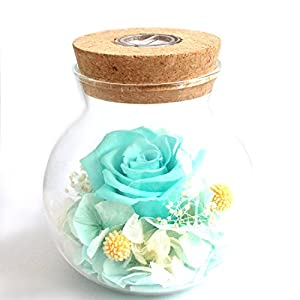 N2 Preserved Rosed Real Flower Roses with Lights 4 Colors Gifts for Girlfriend, Women, Girls, Sisters, Mother's Day, Anniversary, Birthday, Wedding 98