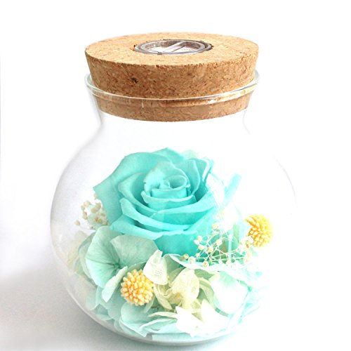 - [2018 New Version] Preserved Rose Real Natural Fresh Flower Handmade Romantic Rose Bottle Light with 4 Colors Gifts For girlfriend, Women, Girls, Sisters, Mother's Day, Anniversary, Birthday, Wedding