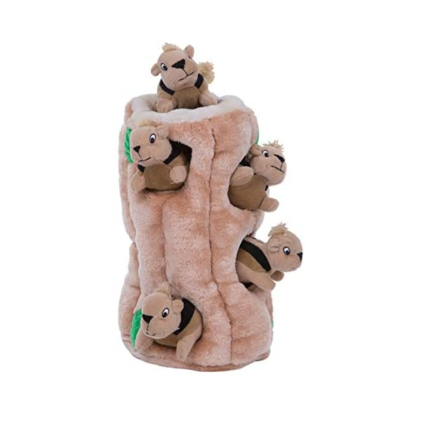 Outward Hound Hide-A-Squirrel Squeaky Puzzle Plush Dog Toy – Hide and Seek Activity for Dogs