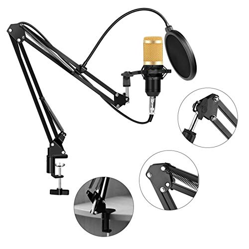 Puyong BM-800 Condenser Microphone Kit, Recording Kit with Adjustable Microphone Holder and Double-Layer Filter, Studio Microphone for Professional Recording Broadcasting Singing,Navy Blue
