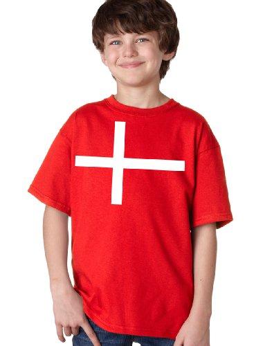 DENMARK NATIONAL FLAG Youth T-shirt / Danish, Copenhagen Tee Shirt