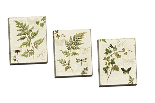 Gango Home Decor Classic Green and Brown Botanical Leaves, Dragonflies and Butterflies Set by Lisa Audit Three 8x10in Hand-Stretched Canvases