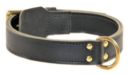 Dean and Tyler  SIMPLICITY , Leather Dog Collar with Solid Brass Hardware Black Size 61cm by 4cm Fits Neck 56cm to 66cm