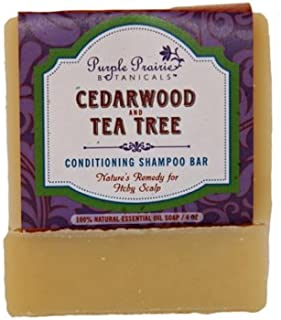 product image for Cedarwood & Tea Tree Shampoo Bar Soap