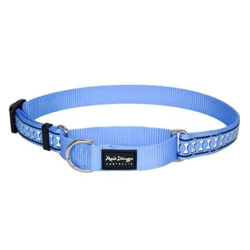 Red Dingo Reflective Martingale Dog Collar, Medium, Mid-Blue