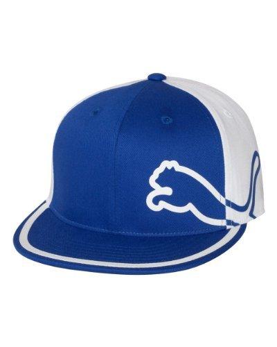 PUMA Men's Monoline 210 Flex-Fit, Blue/White, l/xl ()