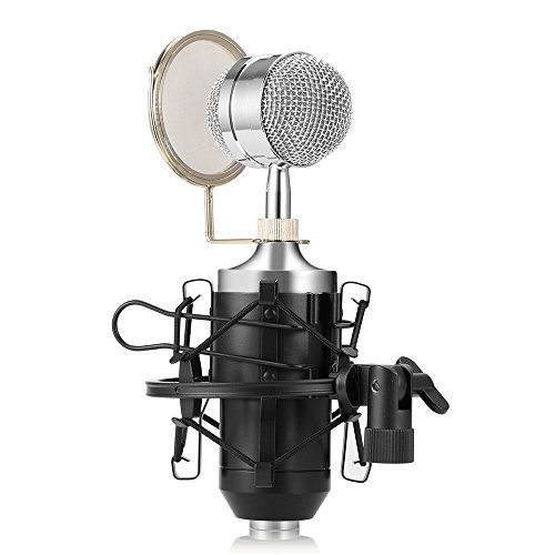 Professional Condenser Studio Recording Broadcasting Microphone,Home Cardioid Vocal Recording Mic with Metal Shock Mount for Recording,Podcasting,Online Chatting,Facebook,YouTube,Skype (Black)
