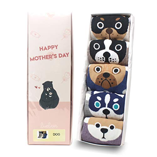 LIVEBEAR 4 Pairs Womens Cute Famous Paintings, Art, Statues, Novelty, Casual Cotton Crew Socks Made In Korea (Places) (My Pet Mother's Day Package)