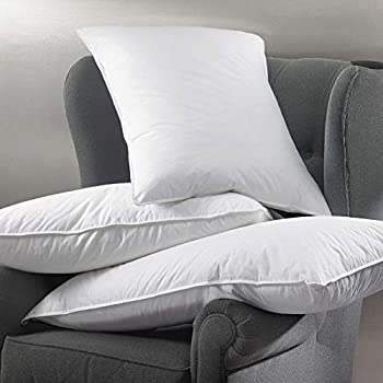 Amazon Com W Hotels Feather Amp Down Pillow Plush High