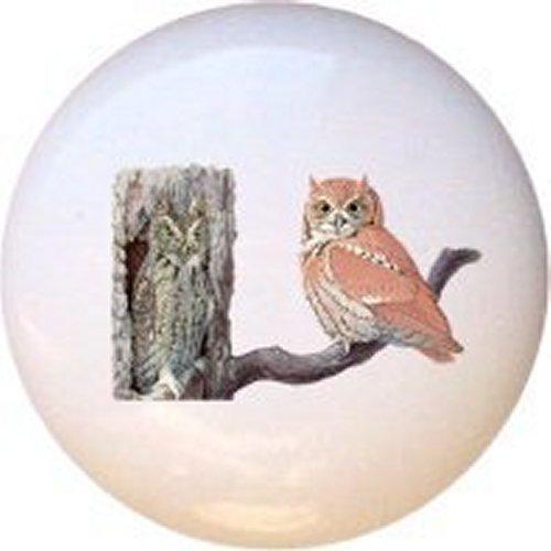 Screech Farm Owl - Eastern Screech Owl Bird Decorative Glossy Ceramic Drawer Pull Knob