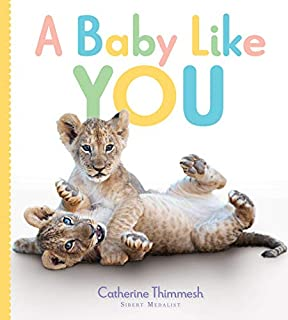 Book Cover: A Baby Like You