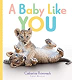 img - for A Baby Like You book / textbook / text book