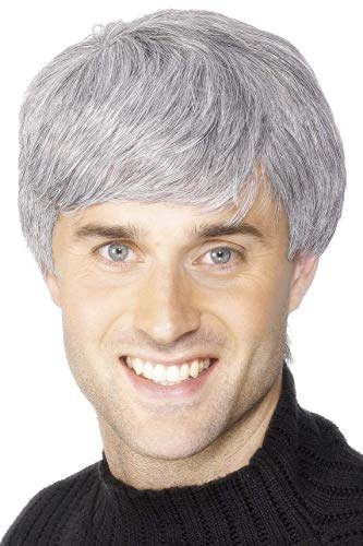 Smiffys Men's Short Grey Wig with Side Swept Bangs, One Size, Corporate Wig, 5020570422090 ()