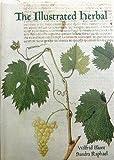 The Illustrated Herbal, Wilfrid Blunt and Sandra Raphael, 0500012261