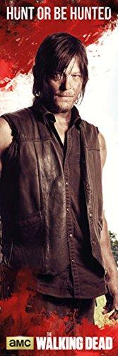 The Walking Dead Daryl Dixon Door Poster