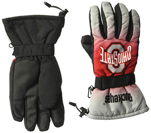 Forever Collectibles NCAA Ohio State Buckeyes Insulated Gradient Big Logo Gloves, Team Colors, Small/Medium