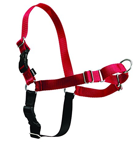 Easy Walk Harness (M/L)(Red) (Best Harness For Weimaraner)