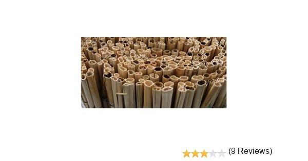 BONERVA Bambu CAÑA Completa (2X5 M): Amazon.es: Jardín